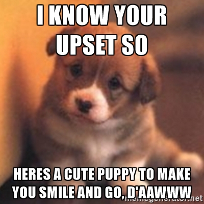 I Know You Upset So Here A Cue Puppy To Make You smile And Go Daaaaa