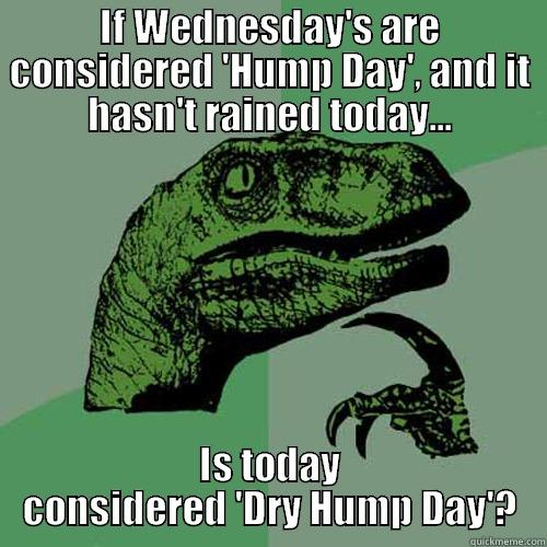 If Wednesday Are Considered Hump Day And Hasnt Rained Today Meme Image
