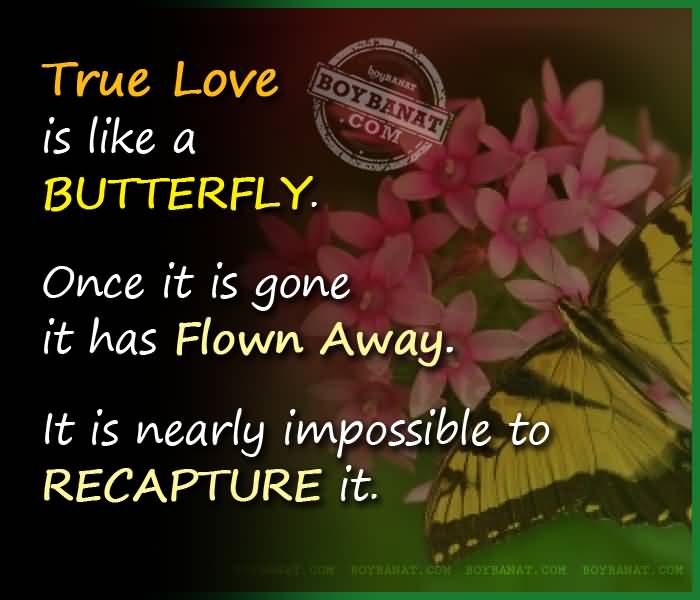 Interracial Love Quotes True love is like a butterfly once it is gone it has flown away