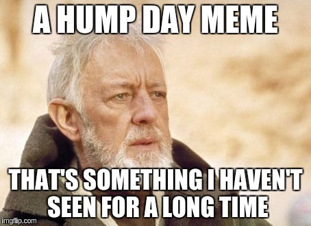 Meme A Hump Day Meme That Something I Havent Seen For A Long time Photo