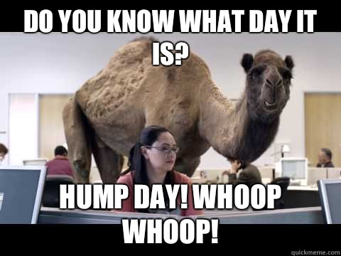 Meme Do You Know What Day It Is Hump Day Whoop Whoop Image
