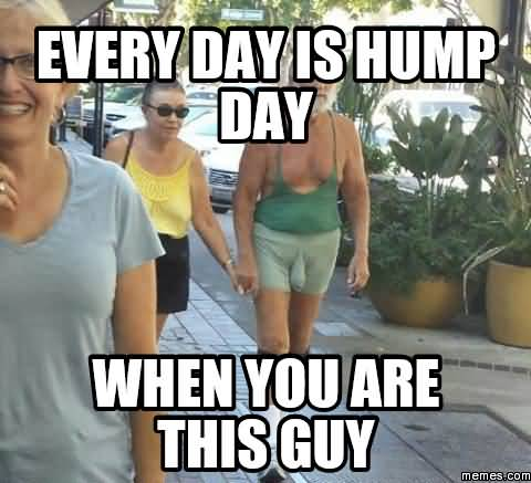 Meme Every Day Is Hump Day When You Are This Guy Picture