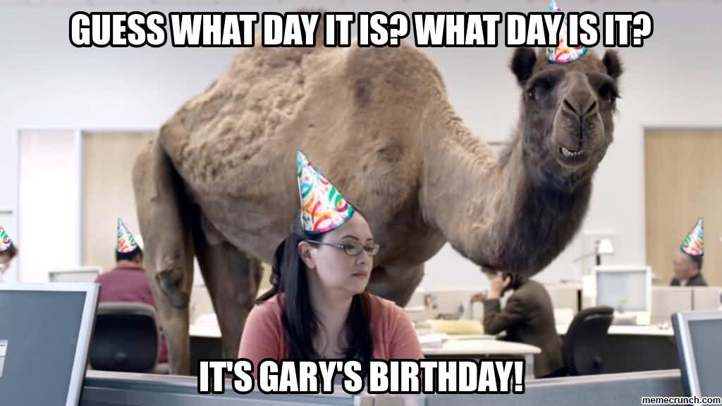 Meme Guess What Day It Is What Day Is It Picture