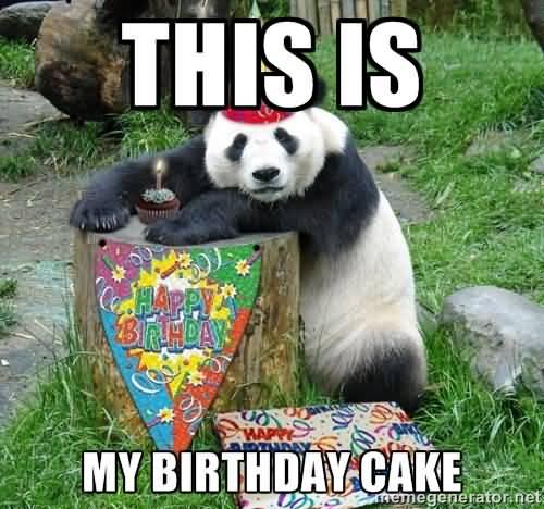 Meme This My Birthday cake Graphic