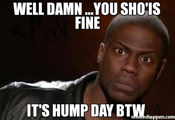 Meme Well Damn You Sho Is Fine Its Hump Day Btw Graphic
