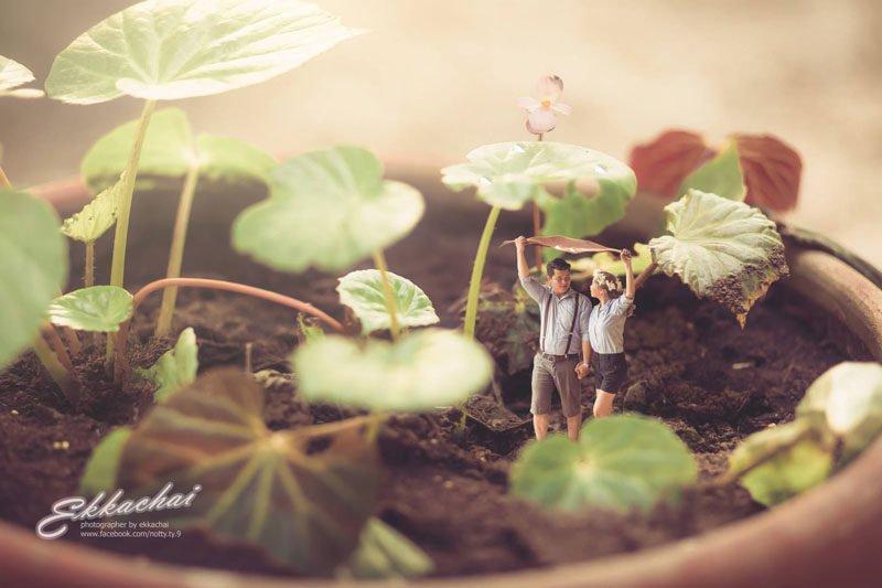 Miniature Wedding Photography 004