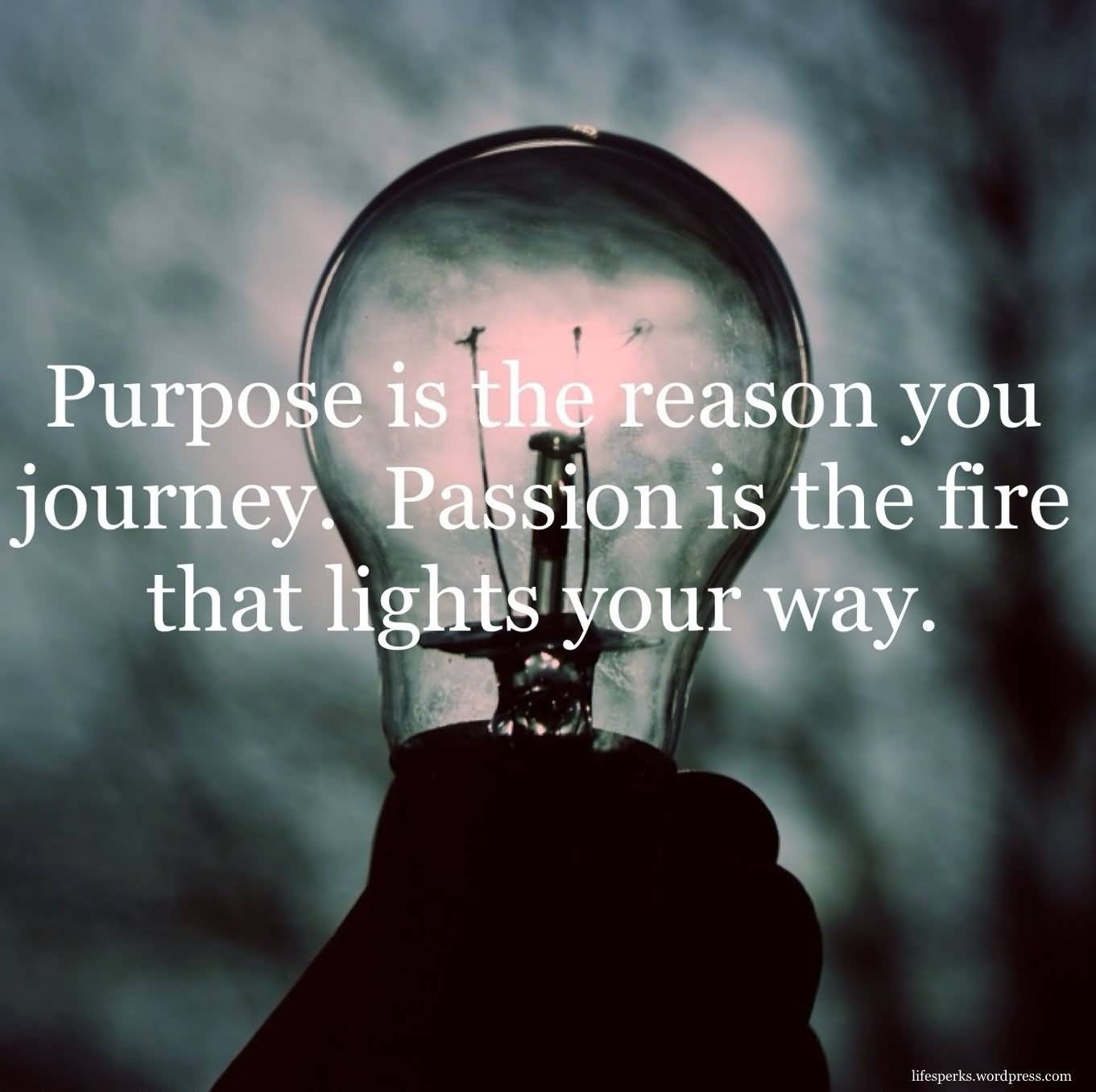 Passion Quotes And Sayings 6