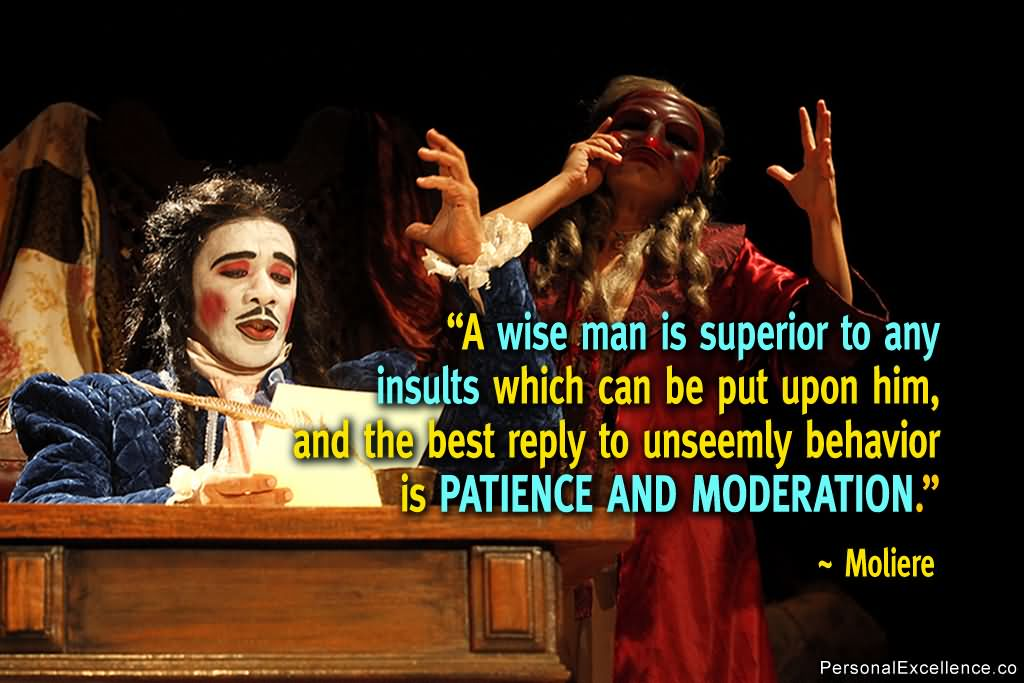Patience Quotes a wise man is superior to any insults which can be put upon hi