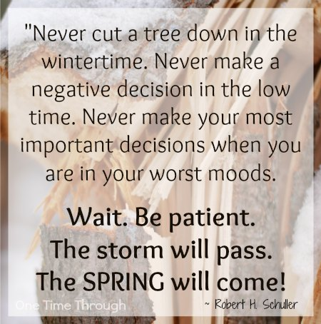 Patience Quotes never cut a tree down in the wintertime never make a negative decision in the low time never make your most