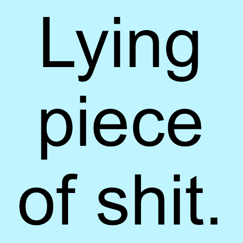 Shit Quotes Lying piece of shut
