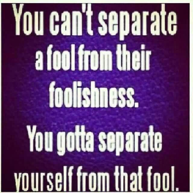So Done Quotes You can't separate a fool from their foolishness you gotta separate
