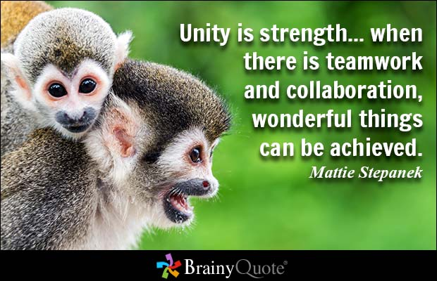 Strength Quotes Unity Is Strength When There Is Teamwork And Collaboration Wonderful Things Can Be Achieved