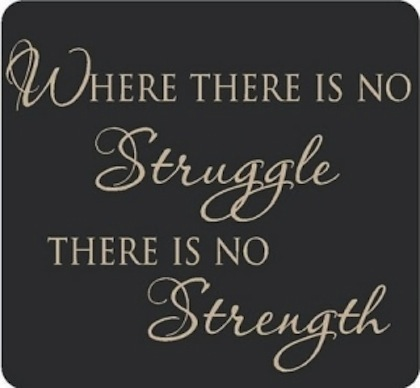 Strength Quotes Where There Is No Struggle There Is No Strength