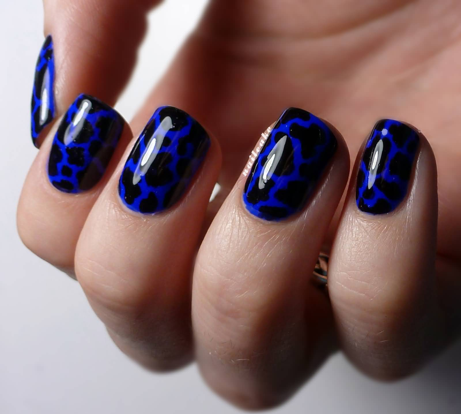Stunning Blue Nails With Leopard Design