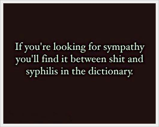 Sympathy Quotes if you're looking for sympathy you'lll find it between shit and syphilis in the dictionary.