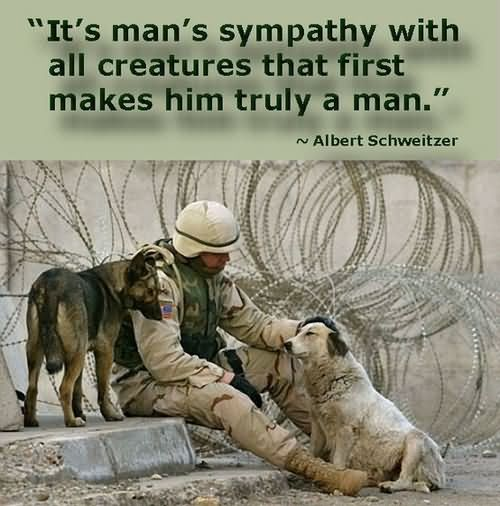 Sympathy Quotes it's man's sympathy with all creatures that first makes him truly a man....