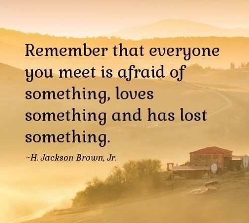 Sympathy Quotes remember that everyone you meet is afraid of something. loves something and has lost something.