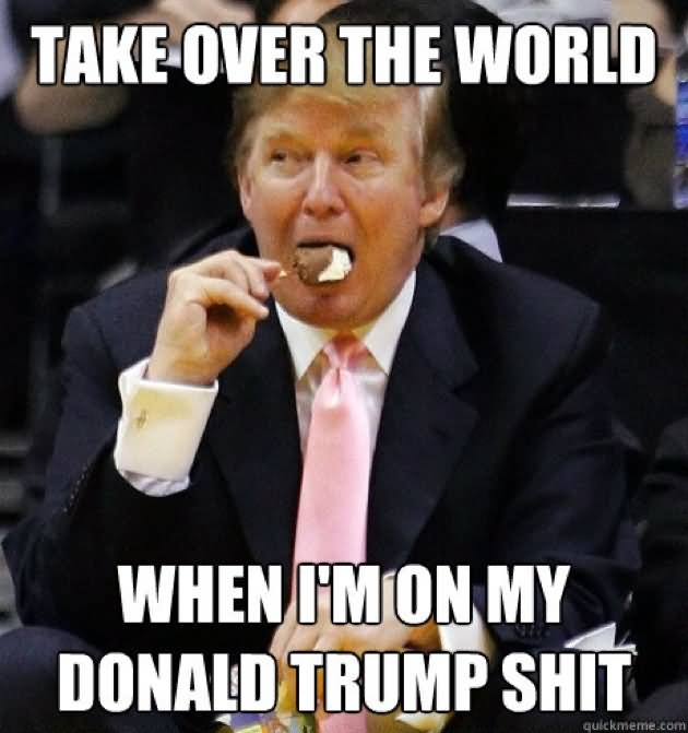 Take Over The World When I Am On My Donald Trump Shit Donald Trump Funny Meme