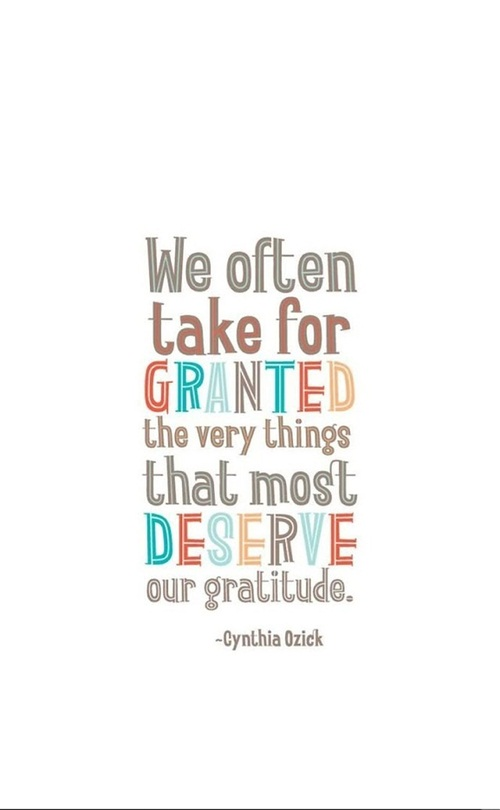 Tbh Quotes We often take for granted the very things that most deserve our gratitude Cynthia Ozick