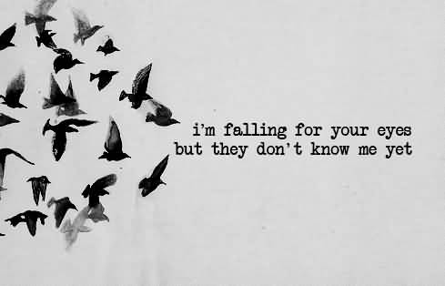 Teen Quotes I'm falling for your eyes but they don't know me yet..