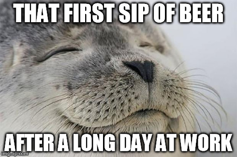 That First Sip Of Beer After A Long Day At Work Funny Beer Memes