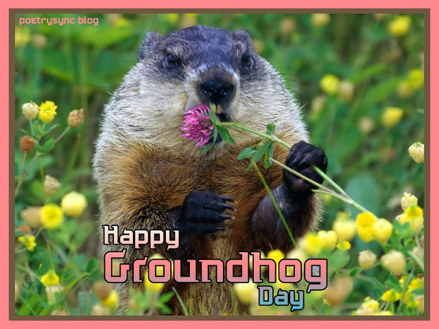 Warm Wishes Happy Groundhog Day Greetings Image