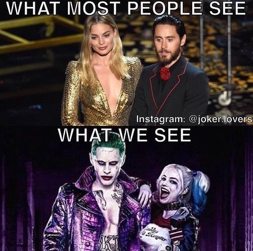 What Most People See What We See Harley Quinn Memes