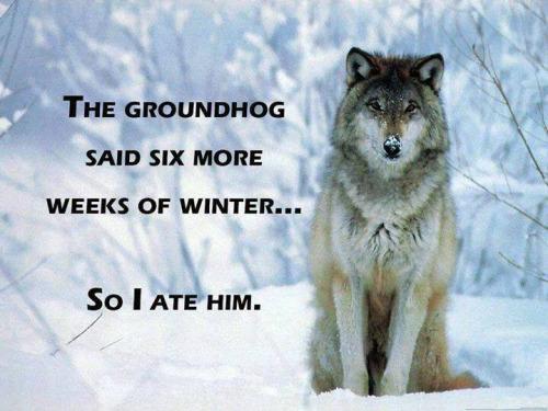 Wish To Everyone Happy Groundhog Day Wishes