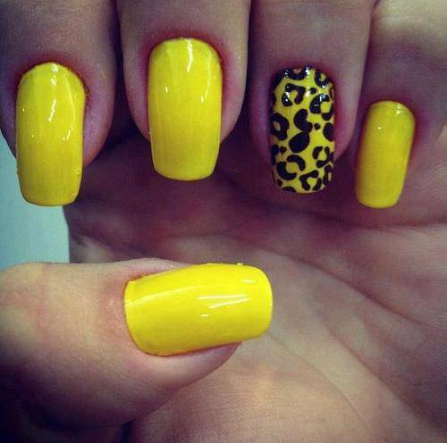 Wonderful Leopard Print With Yellow And Blue Nails