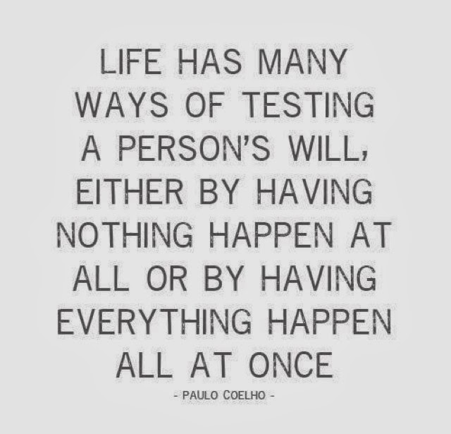 Beautiful Disaster Quotes life has many ways of testing a person's