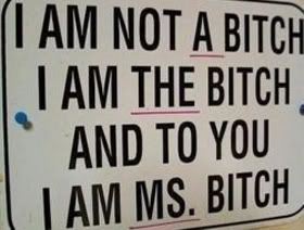 Bitch Quotes i am not a bitch i am the bitch and to you