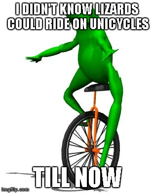 Dat Boi Memes I Didn't Know Lizards Could Ride On Unicycles Till Now