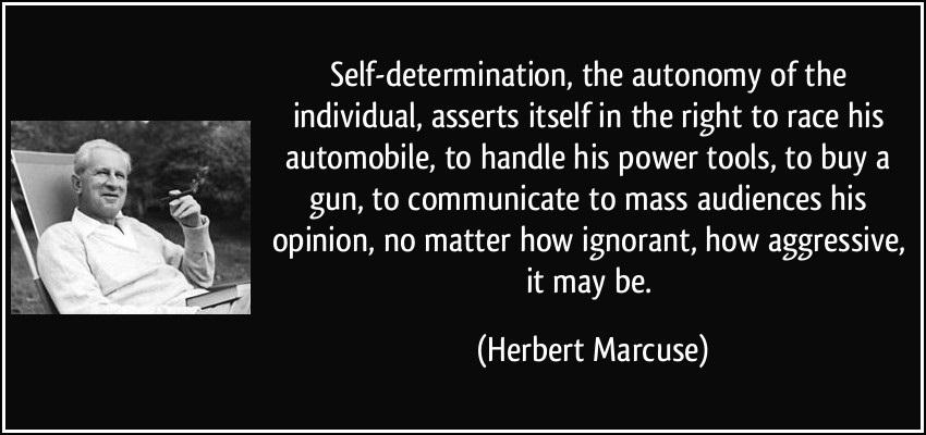 Determination Quotes self determination the autonomy of the individual
