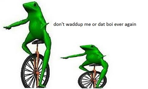 Don't Waddup Me Or Dat Boi Ever Again Dat Boi Memes