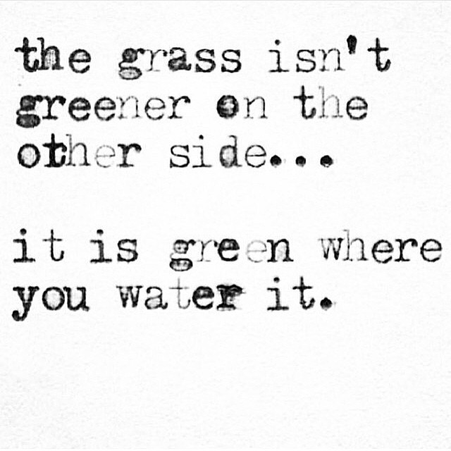 Drug Recovery Quotes the grass isn't greener on the other side