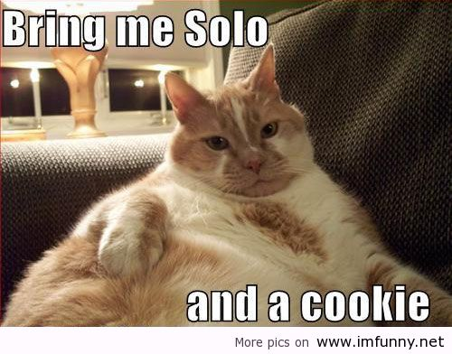 Funny Cookie Meme Bring me solo and a cookie