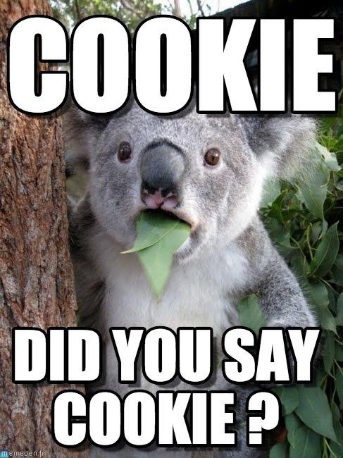 Funny Cookie Meme cookie did you say cookie