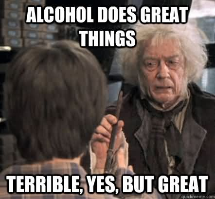 Funny Party Meme Alcohol does great things terrible yes but great