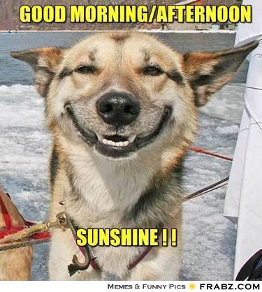 Good Afternoon Meme good morning afternoon sunshine