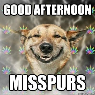 Good Afternoon Memes good afternoon misspurs