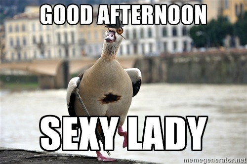Good Afternoon Memes good afternoon sexy lady