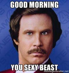 Good Morning Meme good morning you sexy beast