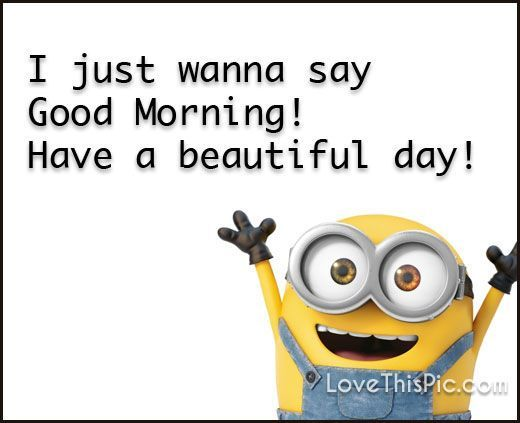 Good Morning Meme i just wanna say good morning have a beautiful day