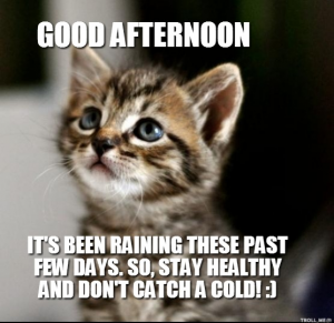 Good afternoon it's been raining these Good Afternoon Meme