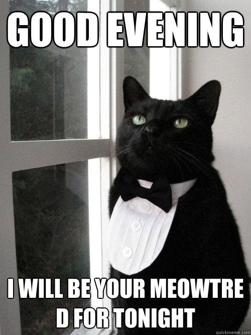 Good evening i will be your maître Good Evening Meme