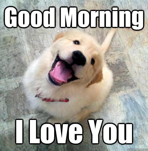 Good morning i love you Good Morning Meme