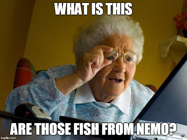 Grandma Meme What Is This Are Those Fish From Nemo