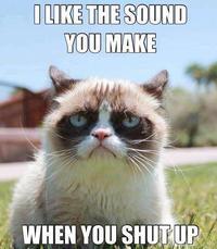 Grumpy Cat Memes I Like The Sound You Make