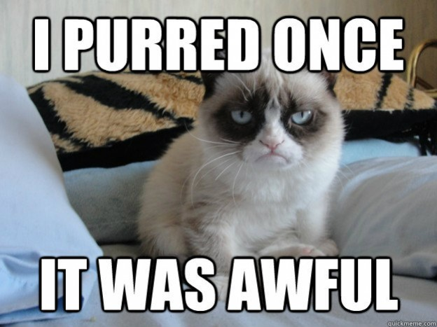 Grumpy Cat Memes I Purred Once It Was Awful
