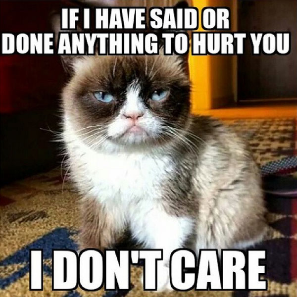 Grumpy Cat Memes If I Have Said Or Done